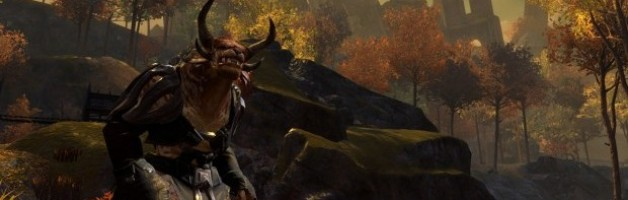 Guild Wars 2: Separating Wheat From Chaff
