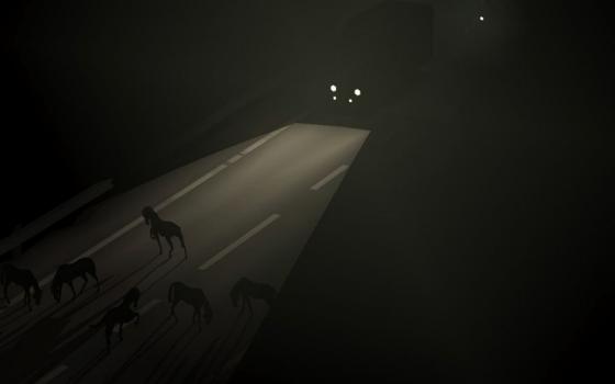 amanda_routezerohorses